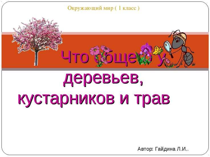 http://uslide.ru/images/11/17369/736/img0.jpg