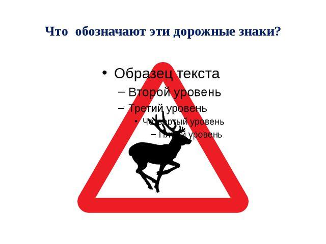 Что обозначают эти дорожные знаки?