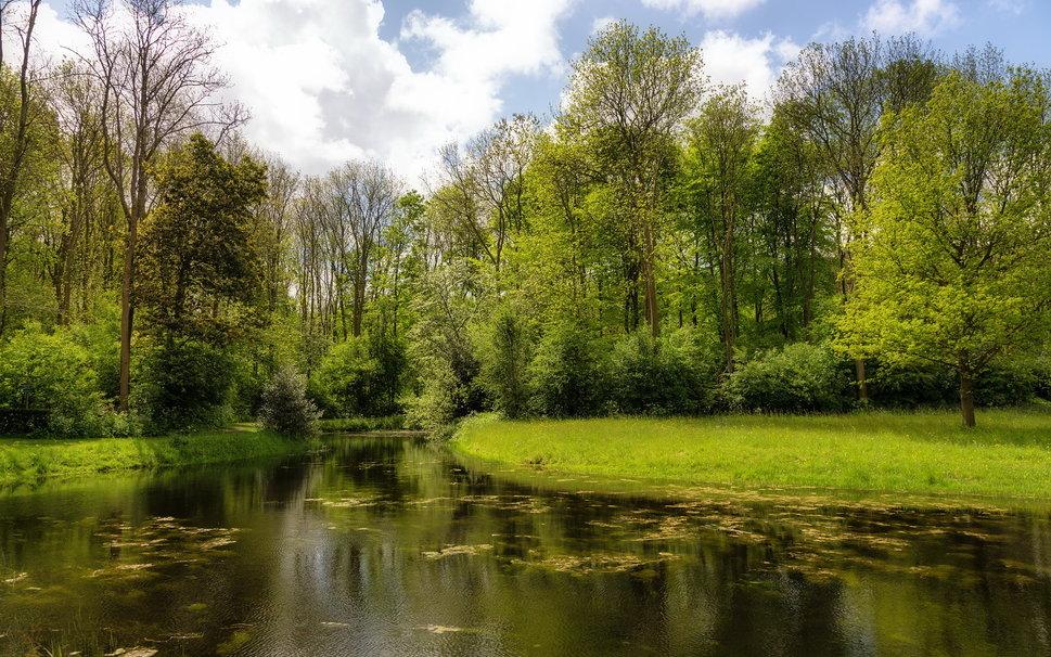 C:\Users\Инна\Desktop\п о-ва\150687__river-trees-nature-summer_p.jpg