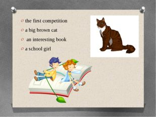 the first competition a big brown cat an interesting book a school girl