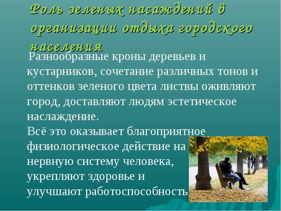 Роль зеленых насаждений в организации отдыха городского населения Разнообразн...
