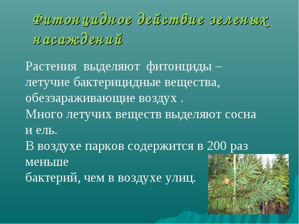 Фитонцидное действие зеленых насаждений Растения выделяют фитонциды – летучи...