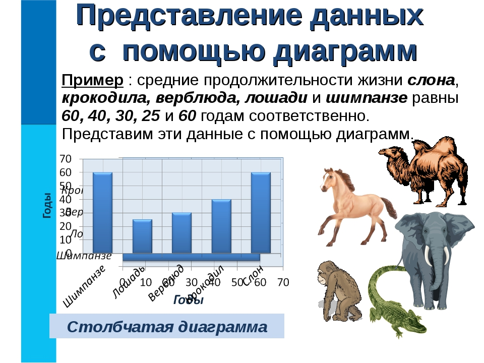 Пример : средние продолжительности жизни слона, крокодила, верблюда, лошади и...