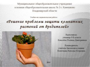Учебно-исследовательская работа: «Решение проблемы защиты комнатных растений