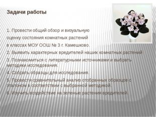 Задачи работы 1. Провести общий обзор и визуальную оценку состояния комнатных