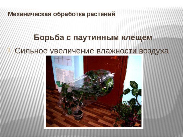 Механическая обработка растений Борьба с паутинным клещем Сильное увеличение...