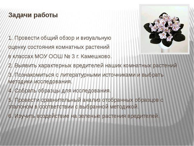 Задачи работы 1. Провести общий обзор и визуальную оценку состояния комнатных...