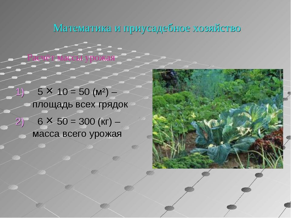 Математика и приусадебное хозяйство 1) 5 × 10 = 50 (м²) – площадь всех грядо...