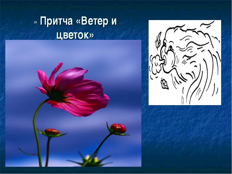 » Притча «Ветер и цветок»