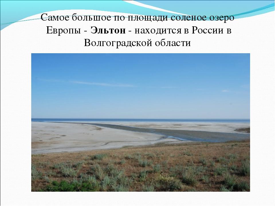Самое большое по площади соленое озеро Европы - Эльтон - находится в России...