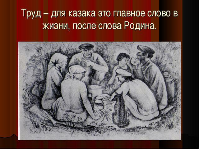 Труд – для казака это главное слово в жизни, после слова Родина.