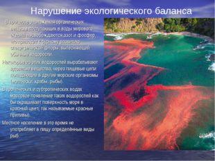 В процессе разложения органических веществ поступающих в воды мирового океан