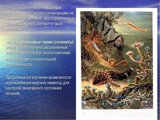 Попадающие в океан токсичные вещества могут оказаться вредными не для всех ор...