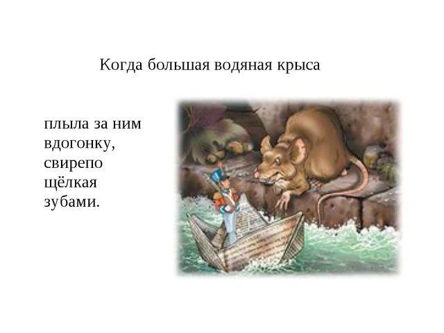 Когда большая водяная крыса плыла за ним вдогонку, свирепо щёлкая зубами.