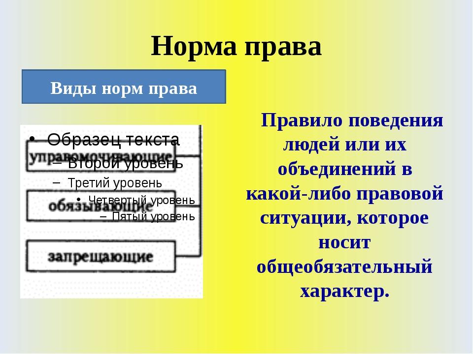 Норма права Правило поведения людей или их объединений в какой-либо правовой...