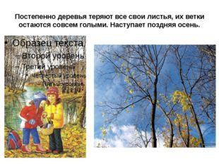 Постепенно деревья теряют все свои листья, их ветки остаются совсем голыми. Н