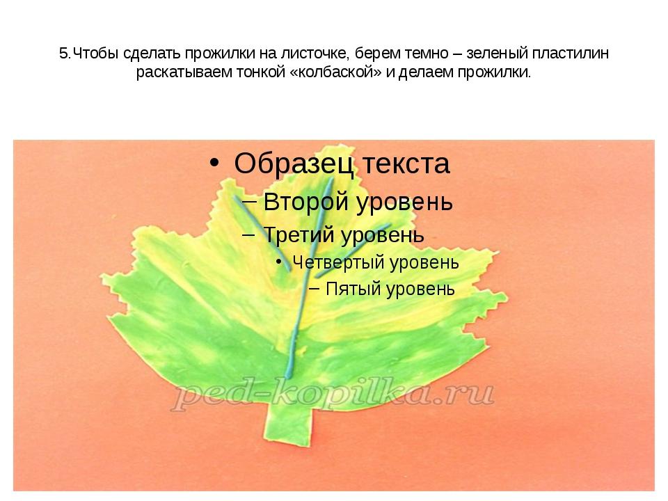 5.Чтобы сделать прожилки на листочке, берем темно – зеленый пластилин раскаты...