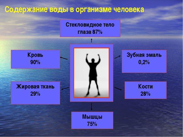 Стекловидное тело глаза 87% Кровь 90% Жировая ткань 29% Зубная эмаль 0,2% Кос...