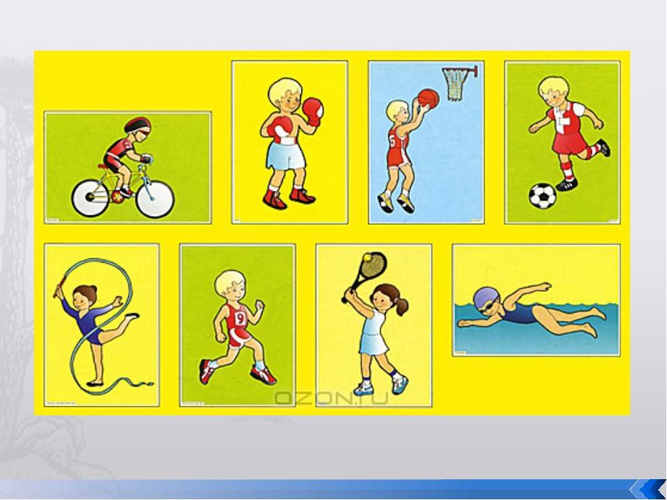 стальную сетку виды спорта в картинках для младшей группы после обращения