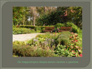 На территории двора много зелени и цветов.