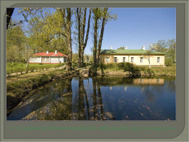 А за главным домом находится небольшой пруд «Аквариум».