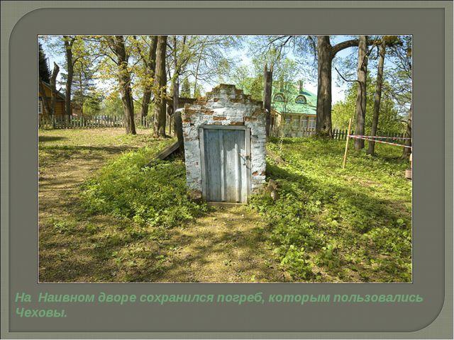 На Наивном дворе сохранился погреб, которым пользовались Чеховы.