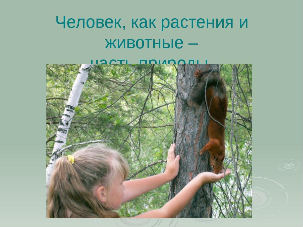 Человек, как растения и животные – часть природы.