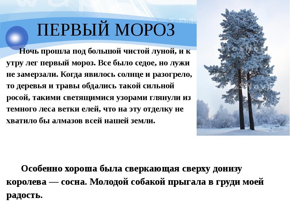 ПЕРВЫЙ МОРОЗ Ночь прошла под большой чистой луной, и к утру лег первый мороз...