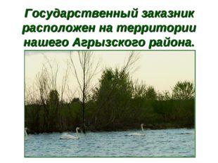 Государственный заказник расположен на территории нашего Агрызского района.