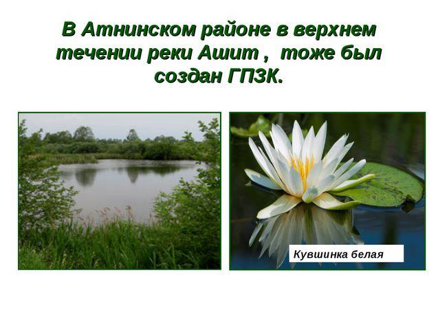 В Атнинском районе в верхнем течении реки Ашит , тоже был создан ГПЗК. Кувшин...