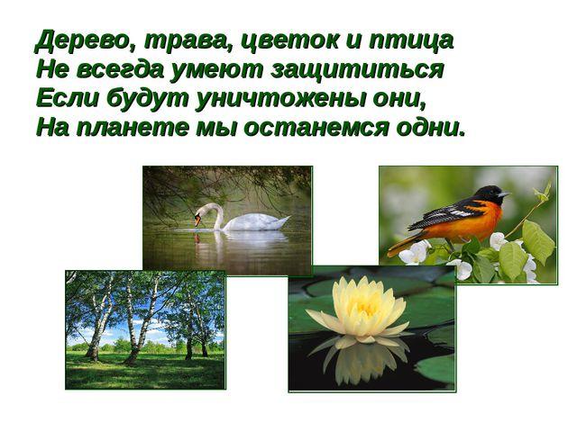 Дерево, трава, цветок и птица Не всегда умеют защититься Если будут уничтожен...