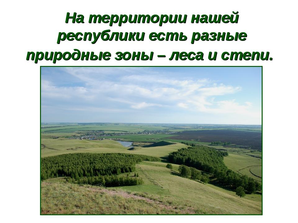 На территории нашей республики есть разные природные зоны – леса и степи.