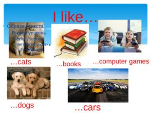 I like… …cats …dogs …books …computer games …cars