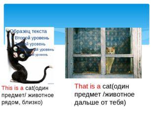 This is a cat(один предмет/ животное рядом, близко) That is a cat(один предм