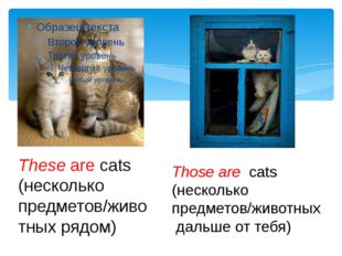 These are cats (несколько предметов/животных рядом) Those are cats (нескольк