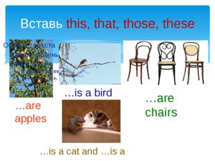 Вставь this, that, those, these …are apples …is a bird …is a cat and …is a mo