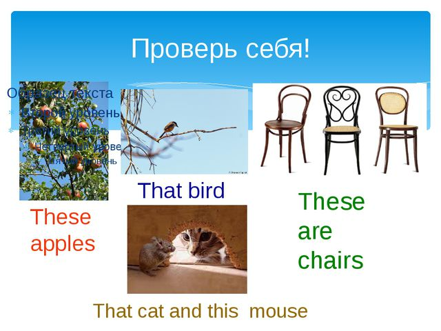 Проверь себя! These apples That bird That cat and this mouse These are chairs