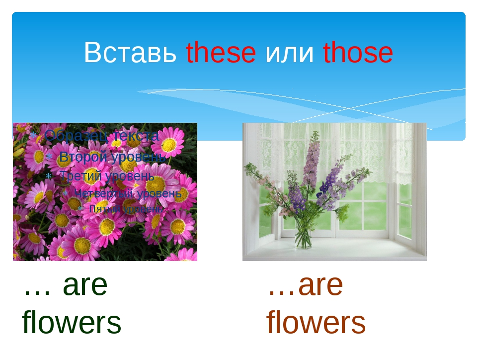 Вставь these или those … are flowers …are flowers