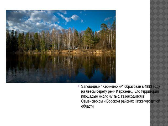 """Заповедник """"Керженский"""" образован в 1993 году на левом берегу реки Керженец...."""