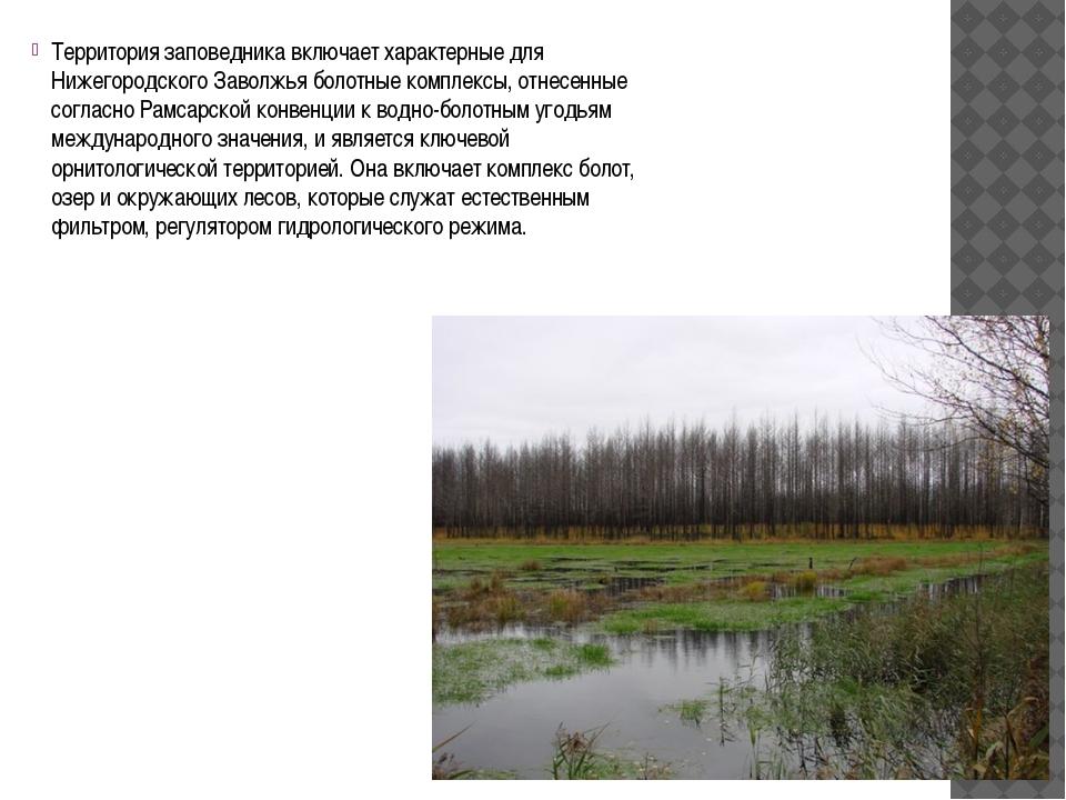 Территория заповедника включает характерные для Нижегородского Заволжья боло...