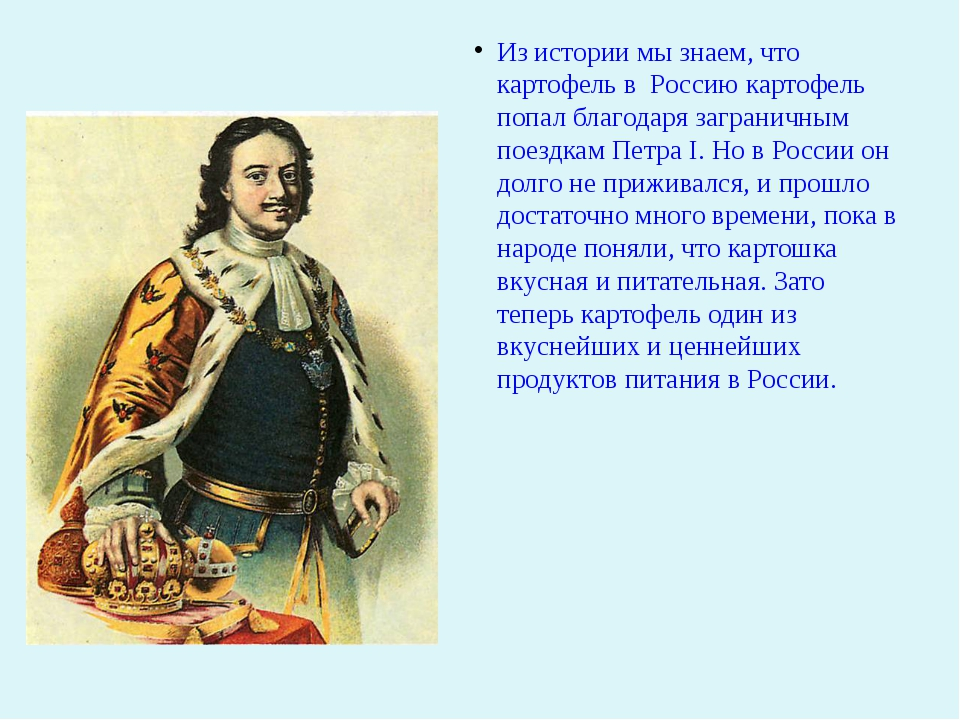 Из истории мы знаем, что картофель в Россию картофель попал благодаря загран...