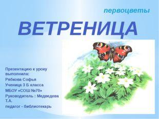Презентацию к уроку выполнила: Рябкова Софья Ученица 3 Б класса МБОУ «СОШ №70