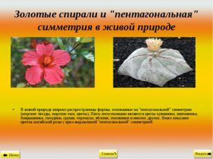 """Золотые спирали и """"пентагональная"""" симметрия в живой природе В живой природе"""