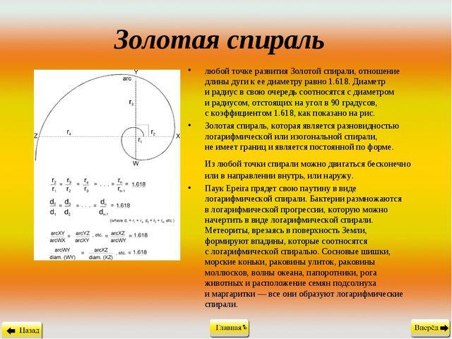 Золотая спираль любой точке развития Золотой спирали, отношение длины дуги к...