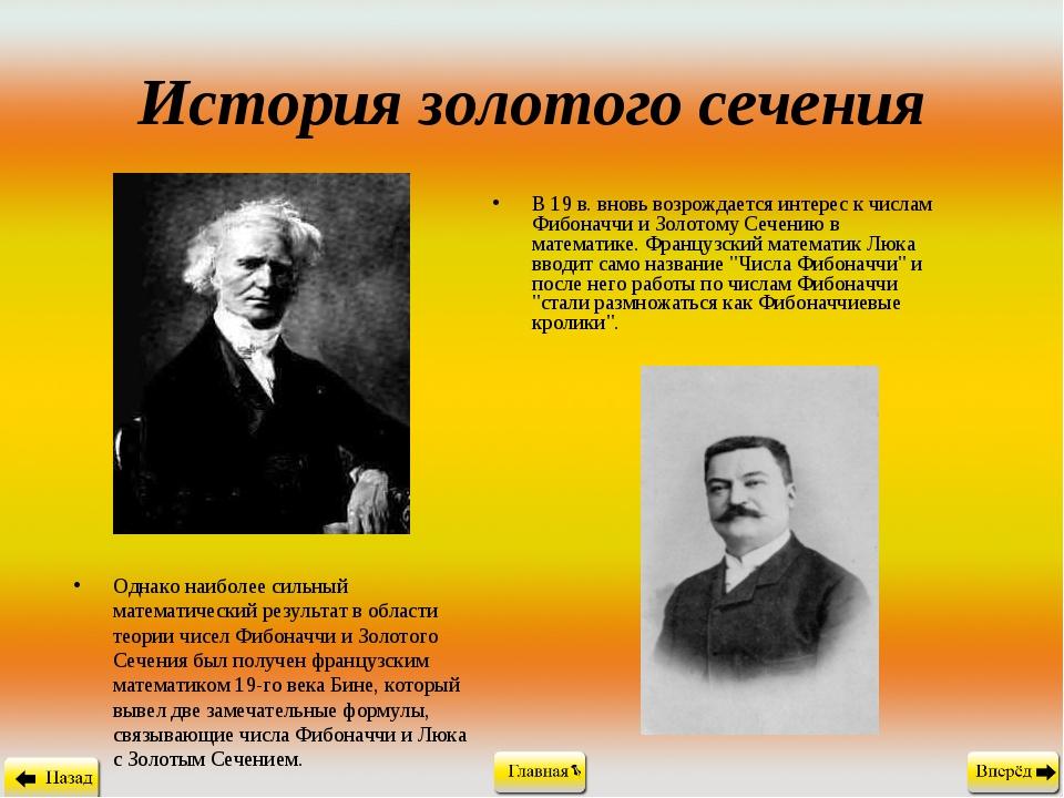 История золотого сечения В 19 в. вновь возрождается интерес к числам Фибоначч...