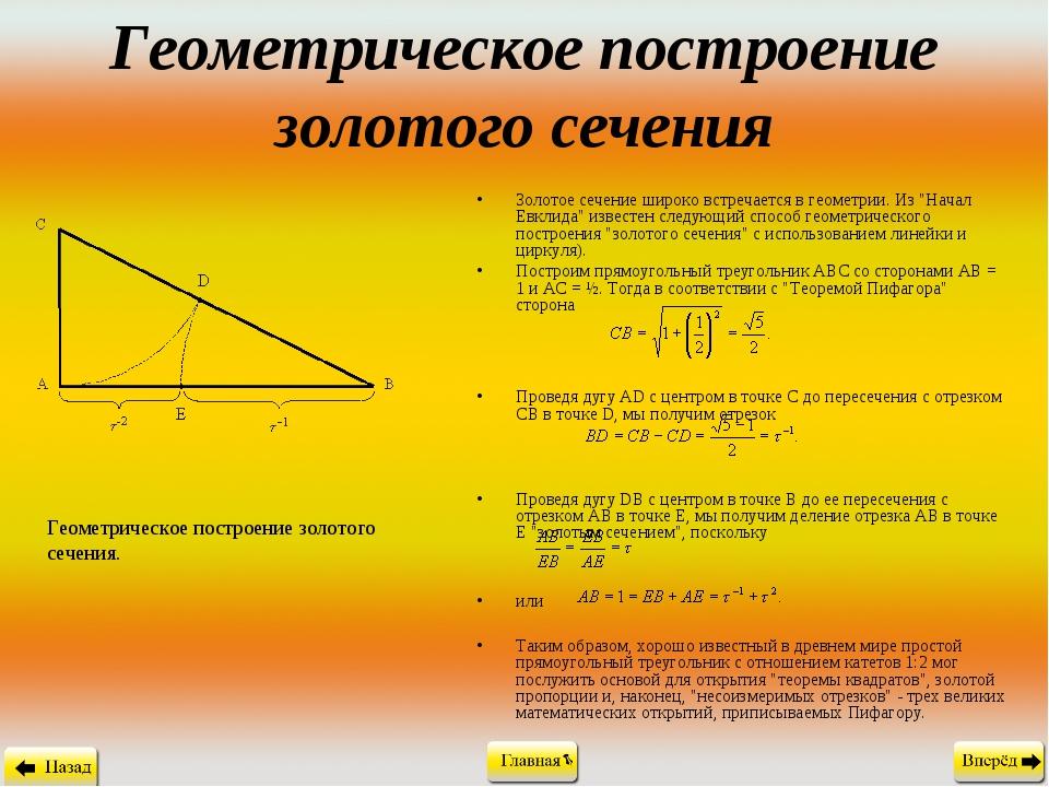 Геометрическое построение золотого сечения Золотое сечение широко встречается...