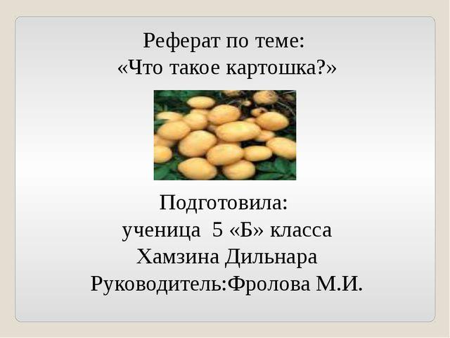 Реферат по теме: «Что такое картошка?» Подготовила: ученица 5 «Б» класса Хамз...