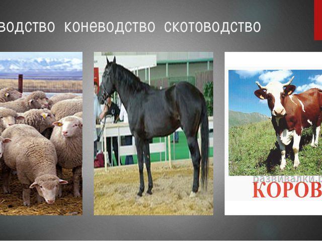 Овцеводство коневодство скотоводство
