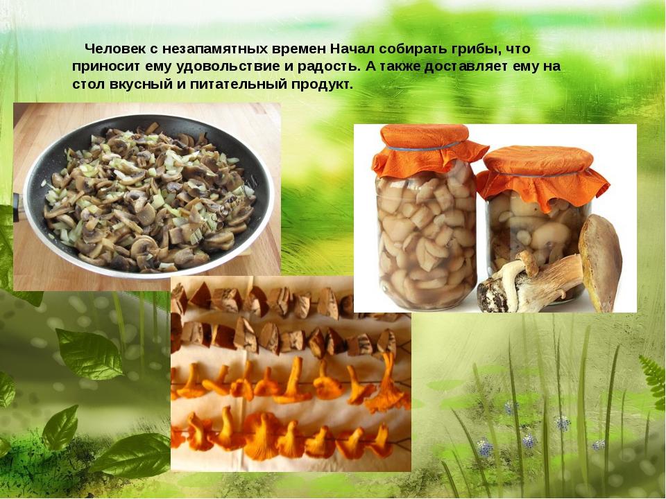 Человек с незапамятных времен Начал собирать грибы, что приносит ему удоволь...