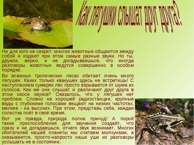 Ни для кого не секрет: многие животные общаются между собой и издают при этом...